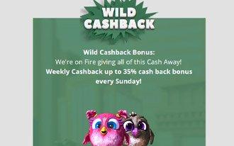 CryptoWild Casino No Deposit Bonus